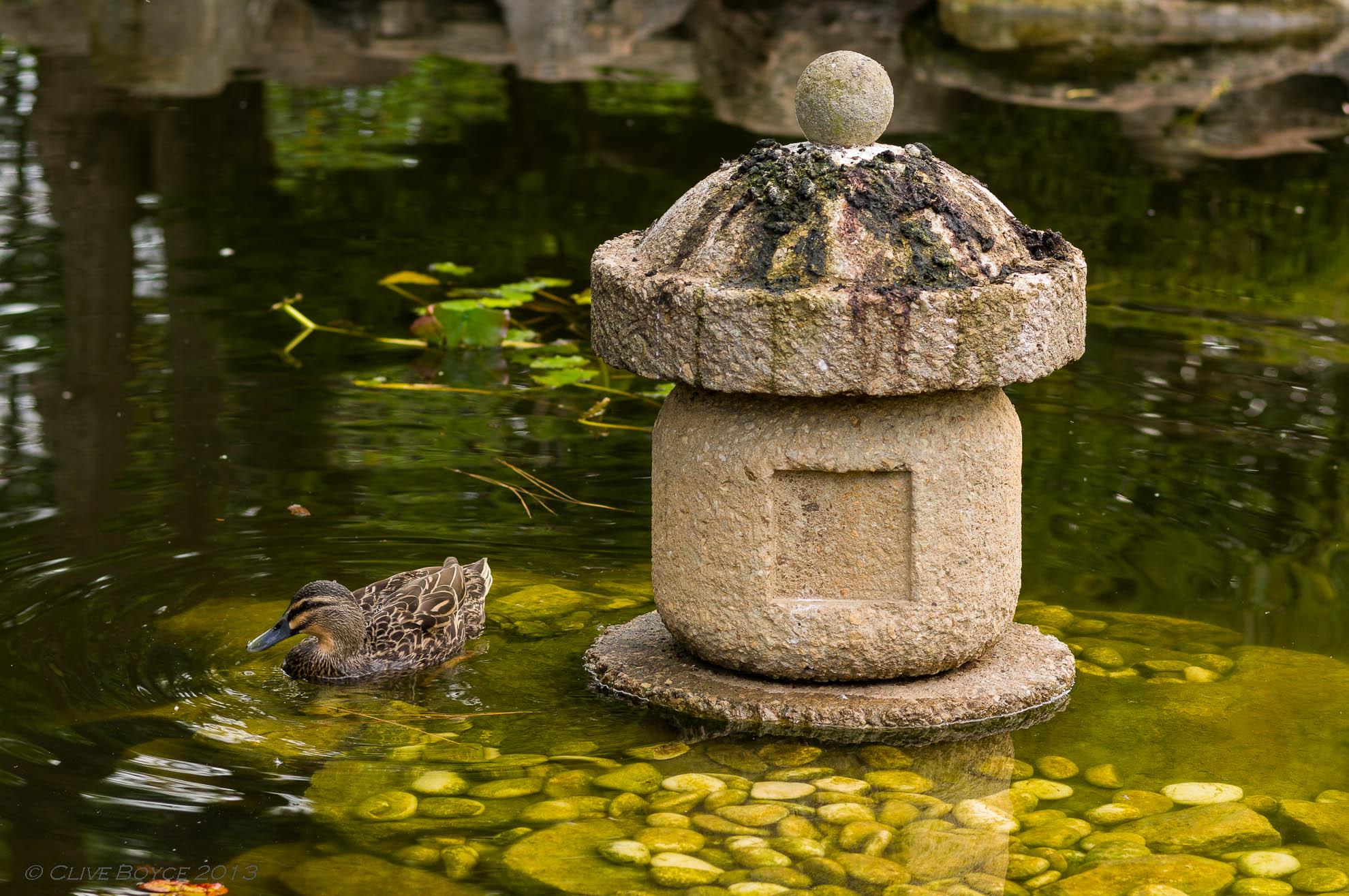 Himeji Garden, Adelaide