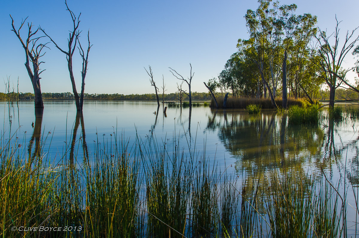 Morning light on the Murray