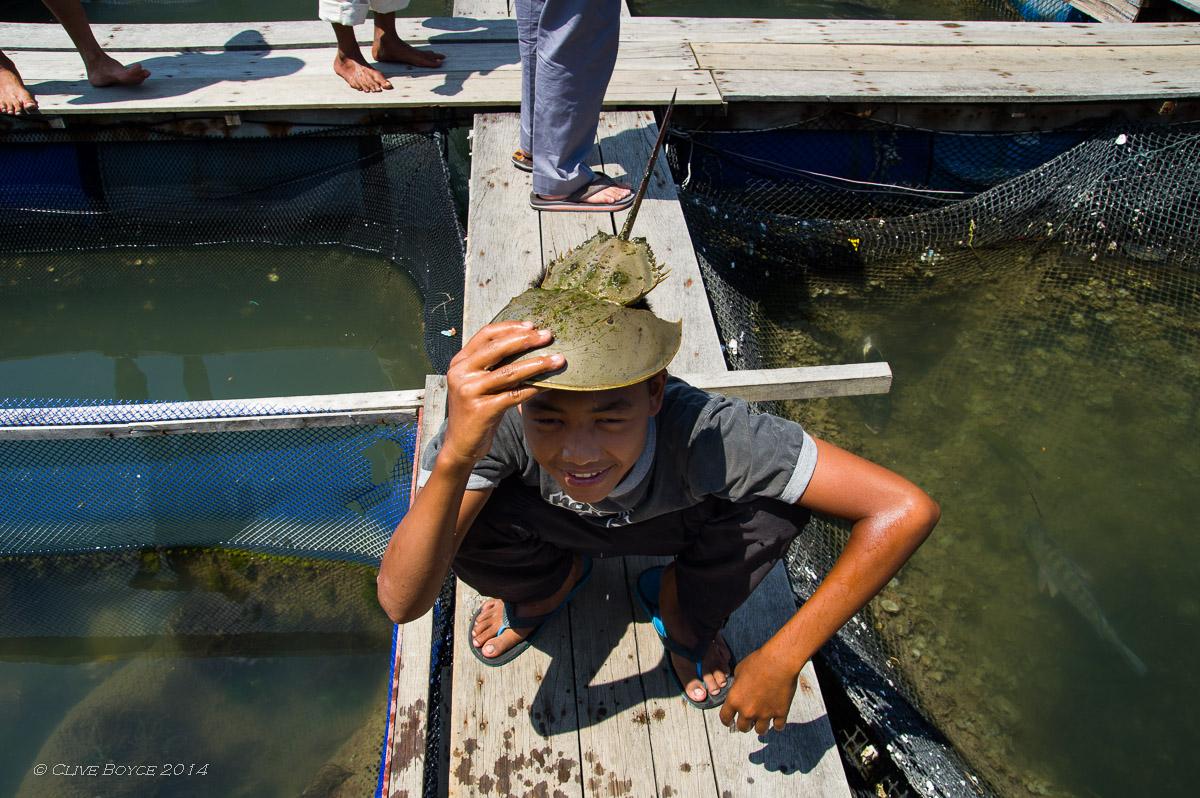 Fish Farm, Kilim Karst Geoforest, Langkawi