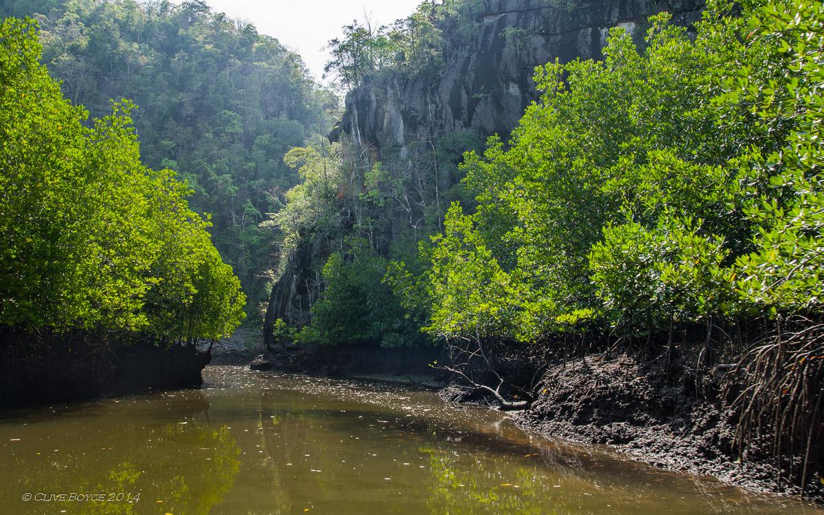 Kilim Karst Geoforest, Langkawi