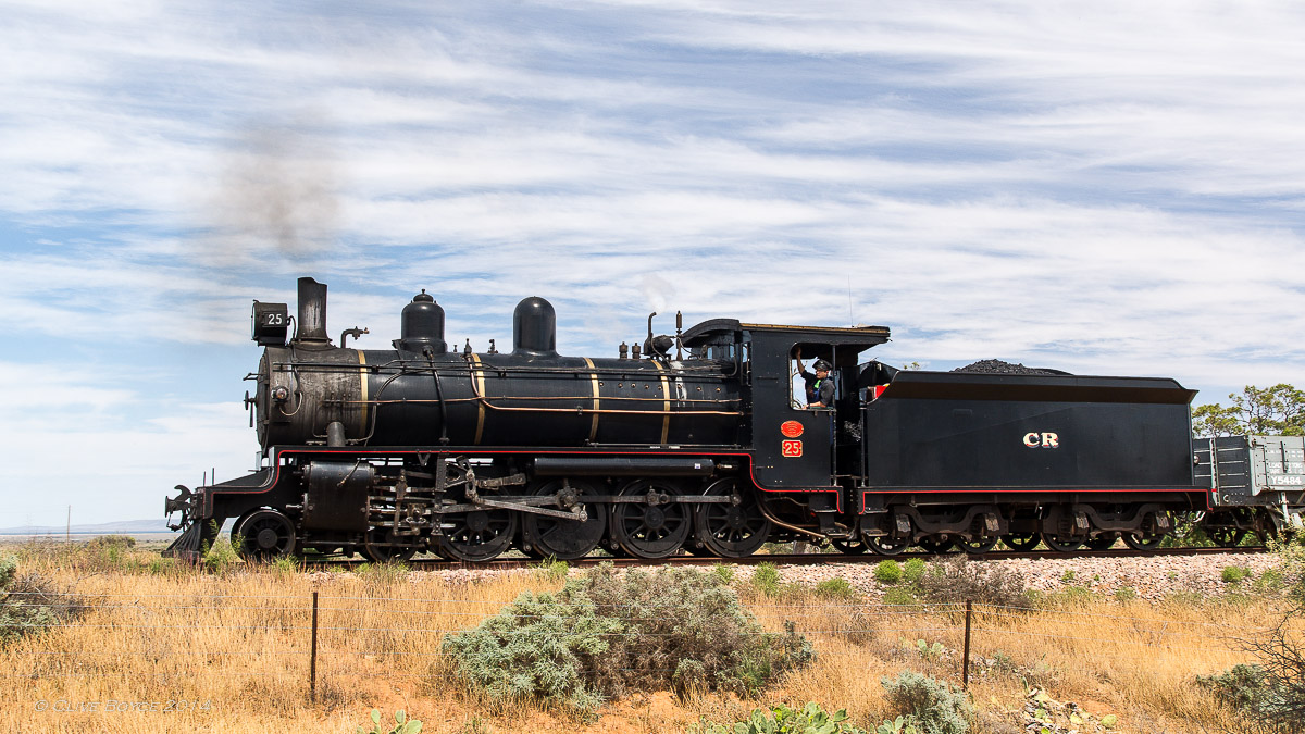 NM25, Pichi Richi Railway
