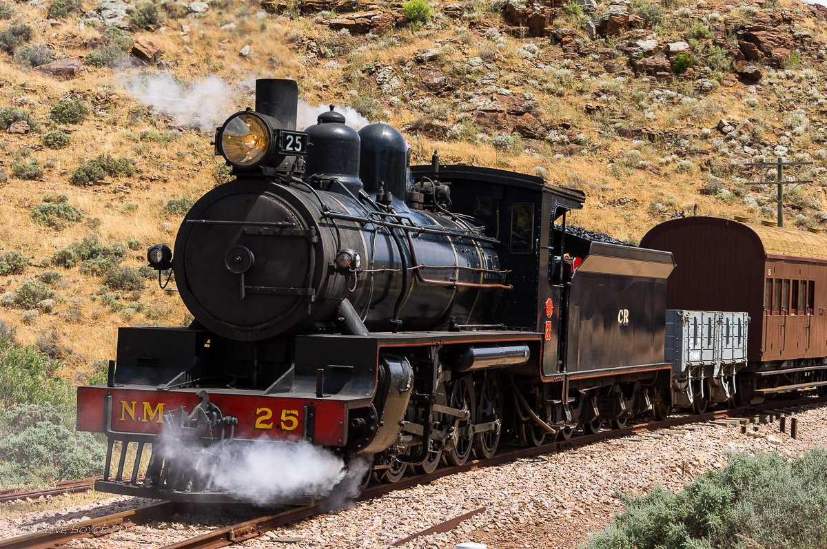 NM25, Afghan Express, Pichi Richi Railway