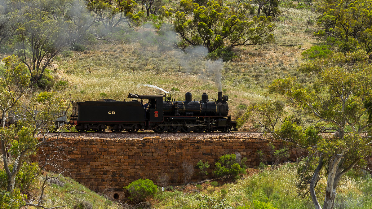 NM25, W22, Pichi Richi Railway