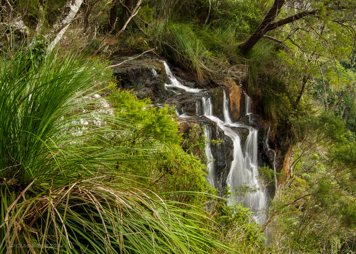 how to get to springbrook national park from surfers paradise