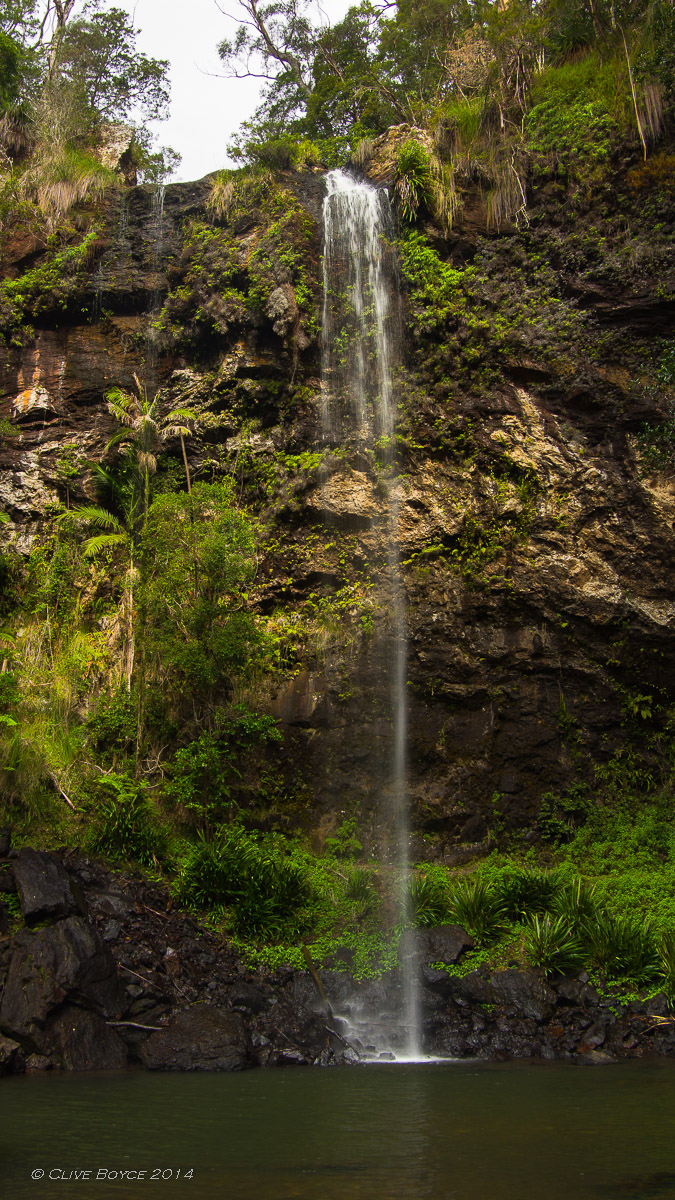 Twin Falls walk, Springbrook National Park